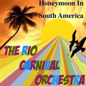 Honeymoon in South America