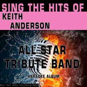 Sing the Hits of Keith Anderson