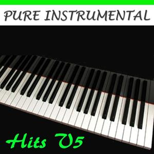 Pure Instrumental: Hits, Vol. 5