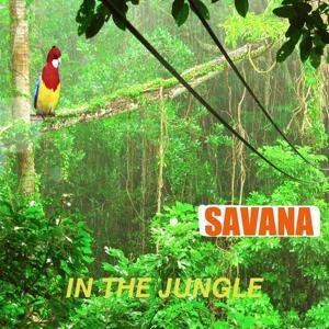 Jungle (In the Jungle)