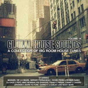 Global House Sounds, Vol. 14