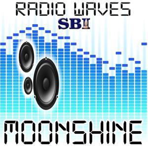 Moonshine - A Tribute to Bruno Mars (Unorthodox Jukebox)