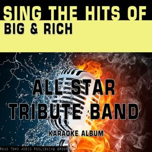Sing the Hits of Big & Rich