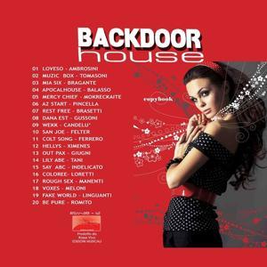 Backdoor House