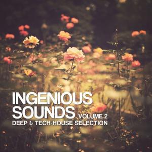 Ingenious Sounds, Vol. 2