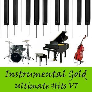 Instrumental Gold: Ultimate Hits, Vol. 7