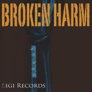 Broken Harm (Electro Minimal)
