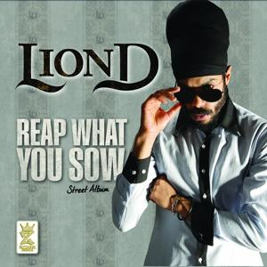 Reap What You Sow (Street Album)