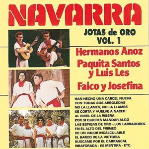 Jotas de Oro : Navarra, Vol. 1