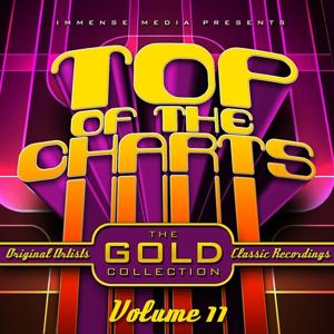 Immense Media Presents - Top of the Charts, Vol. 11