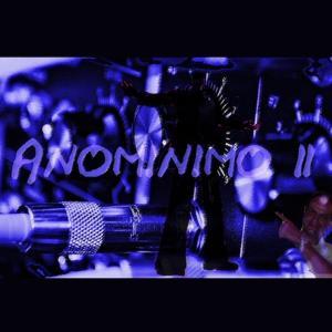 Anominimo, Vol. 2