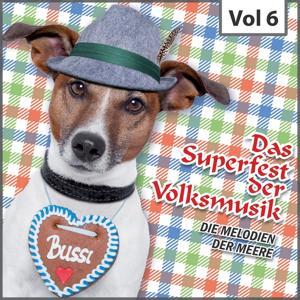 Das Superfest der Volksmusik, Vol. 6