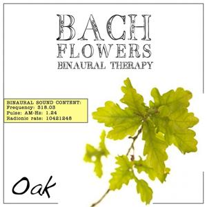 Oak EFT Dose Therapy (Binaural Real Frequency from Bach Flowers)