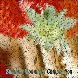 Summer Moonlight Compilation (Top 50 Summer Hits Essential for Djs)