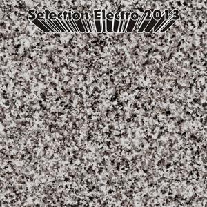 Selection Electro 2013