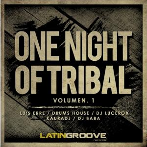 VA One Night of Tribal, Vol. 1