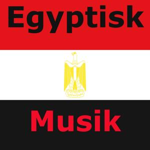 Egyptisk musik (Forskellige genrer)