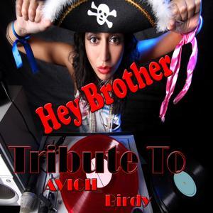 Hey Brother: Tribute to Avicii, Birdy