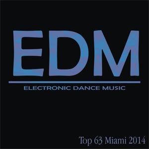 Edm Top 63 Miami 2014
