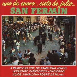 Uno de Enero... Siete de Julio San Fermin