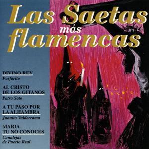 Las Saetas Más Flamencas
