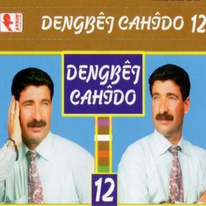 Dengbêj Cahîdo, Vol. 12 (Kinê)