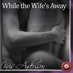 While the Wife's Away (A Gay Erotic Story)