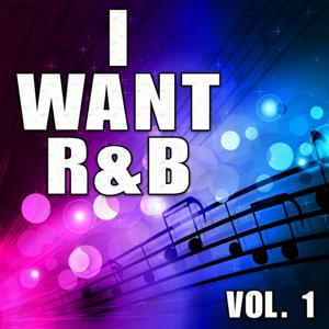 I Want R&B, Vol. 1