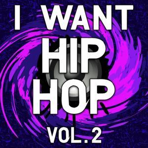I Want Hip Hop, Vol. 2