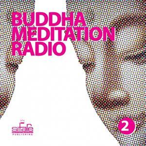 Buddha Meditation Radio, Vol. 2 (Relaxation and Wellness Music)