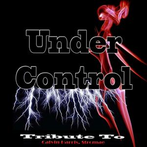 Under Control: Tribute To Calvin Harris, Stromae