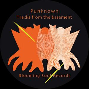 Tracks from the basement