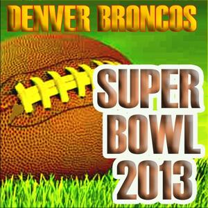 Denver Broncos 2013 Super Bowl Hits
