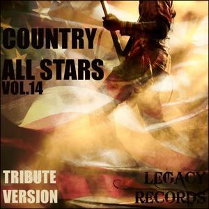 Country Allstars Vol. 14