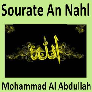Sourate An Nahl (Quran - Coran - Islam)