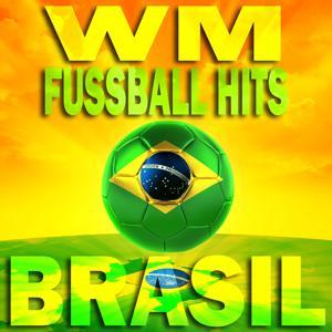 WM Fussball Hits Brasil