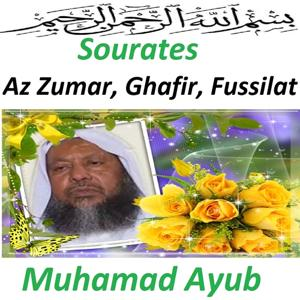 Sourates Az Zumar, Ghafir, Fussilat (Quran - Coran - Islam)