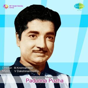Padunna Puzha (Original Motion Picture Soundtrack)