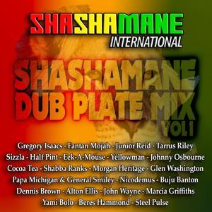 Shashamane Dub Plate Mix, Vol. 1 (Shashamane International Presents)