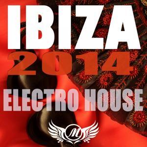 Ibiza 2014 Electro House