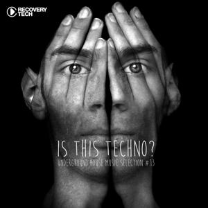 Is This Techno?, Vol. 13