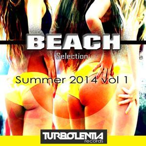 Beach Summer, Vol. 1