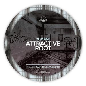 Attractive Root