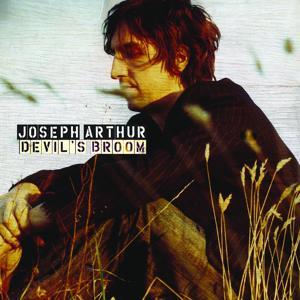 Devil's Broom (DMD)