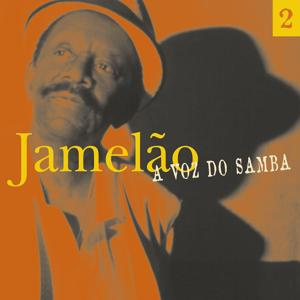 A Voz Do Samba (Disco  02)