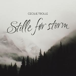 Stille Før Storm