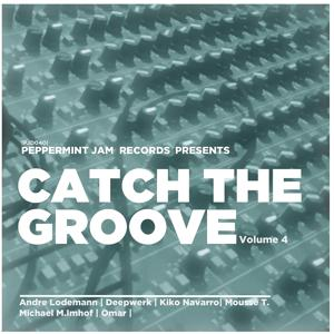 Catch the Groove, Vol. 4