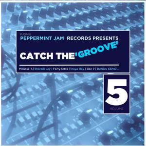 Peppemint Jam Records Pres., Catch the Groove, Vol. 5