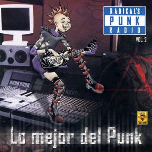 Radikal´s Punk Radio, Vol. 2