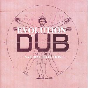 Evolution Of Dub Vol 4